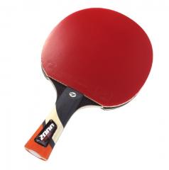 Cornilleau Excell 2000 PHS Table Tennis Bat
