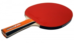 Cornilleau Sport 300 Table Tennis Bat